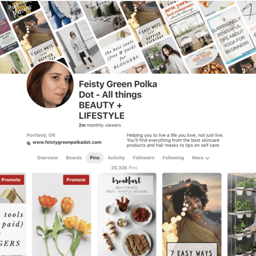 How to Grow Your Pinterest Following Fast