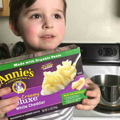 Quick and Easy Meal Plan For Toddlers
