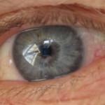 Feldenkrais för ögonen