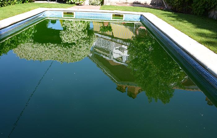 piscina verda