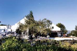 Spier, the mixed wine farm