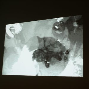 projection of the gallery's surveillance Camera