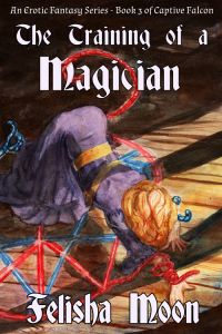 Book Cover: The Training of a Magician