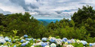Turismo na terceira idade – Gramado – Rio Grande do Sul