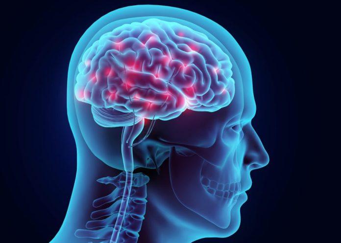 Veja exercícios para melhorar a memória