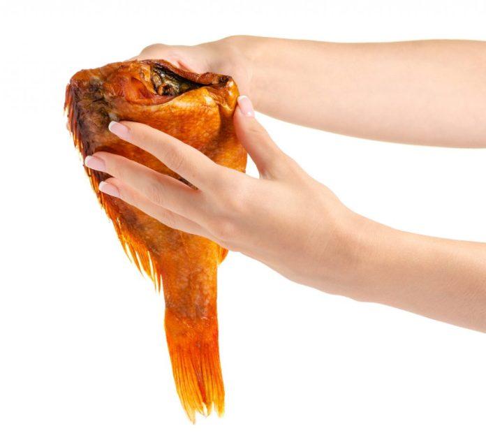 Peixe – Fotos dos melhores tipos para a saúde