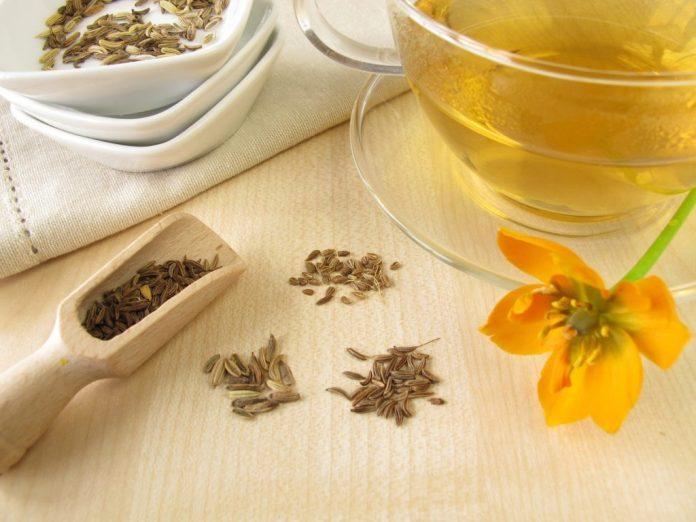 Chá de Erva-doce – Um dos mais populares do Brasil