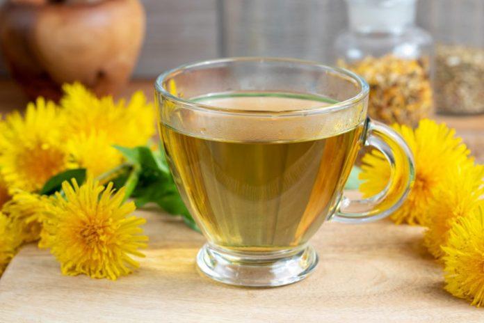 4 chás bons para a saúde dos rins