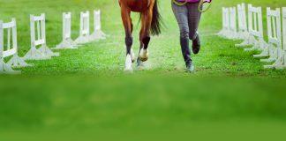 Equoterapia – Benefícios da terapia com cavalos