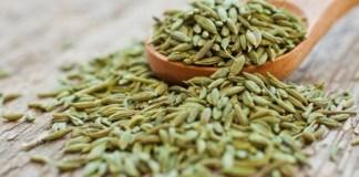 Erva-doce – Tiro e queda contra indigestão e muito mais