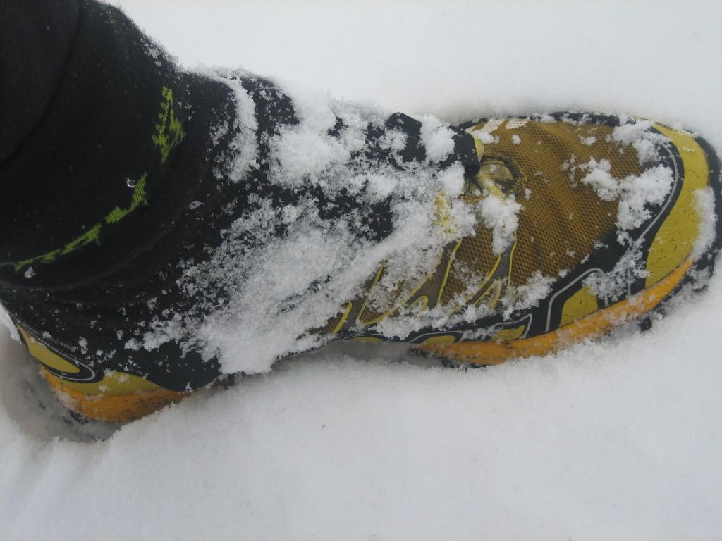 inov8 debris sock