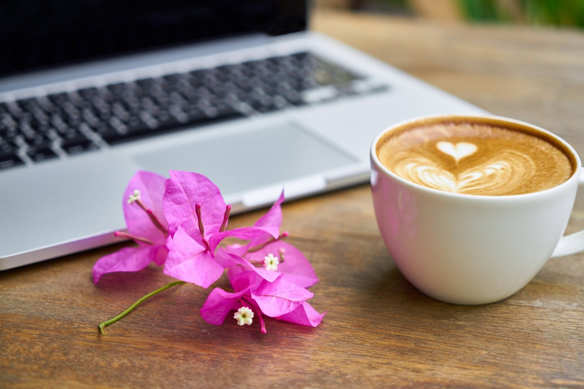 Everything you need to know about buying a domain name coffee 2242212 1920