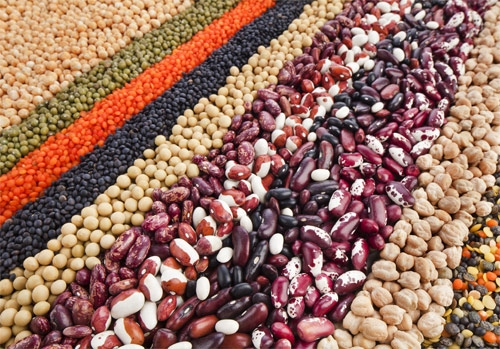 Legumi: la carne dei poveri - Female World - Il blog delle donne