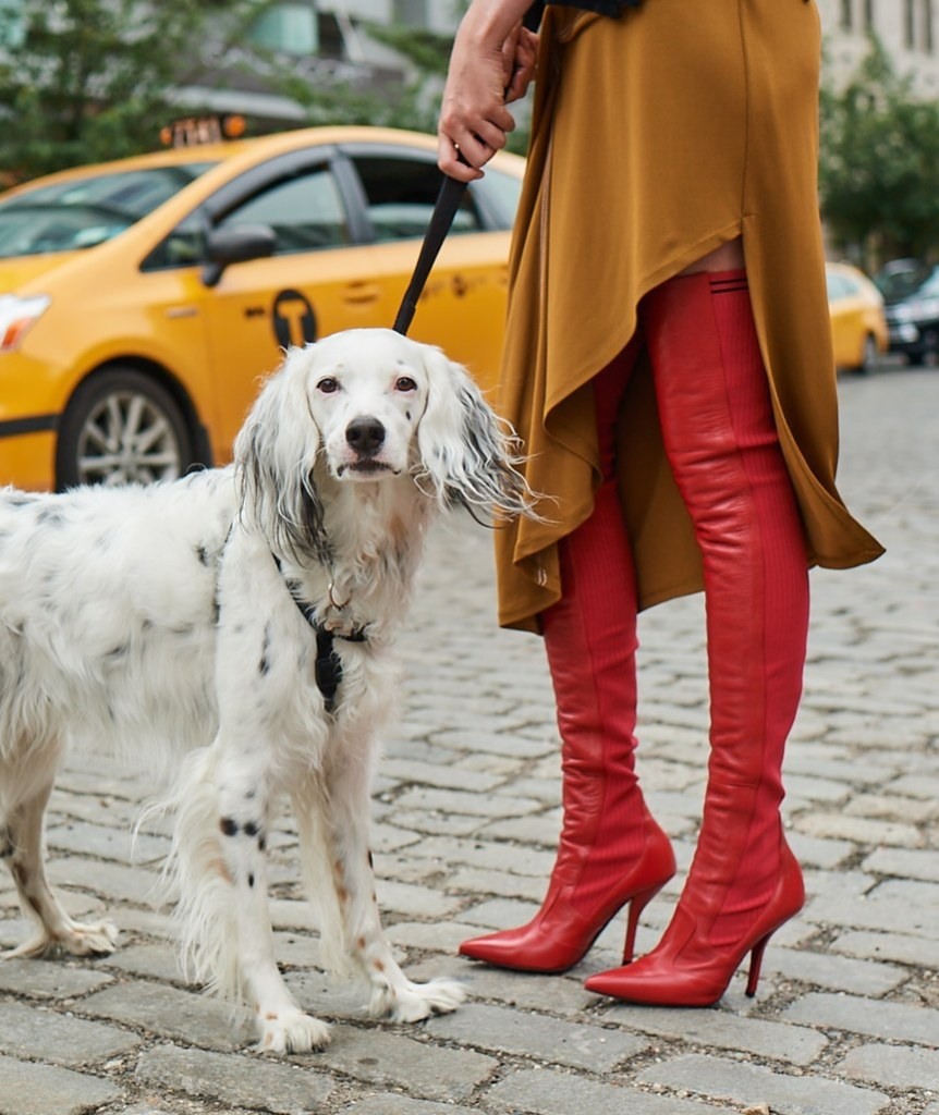 Neiman Marcus' Fall Catalog Features Good Shoes With Even Better Puppies