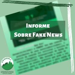 Informe sobre Fake News