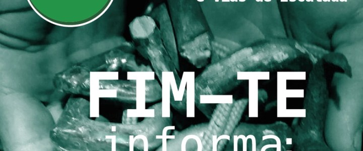 FIM-TE Informa: