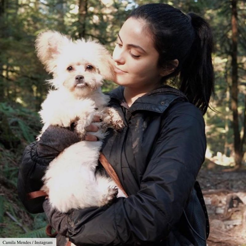 camila mendes adopted foster dog