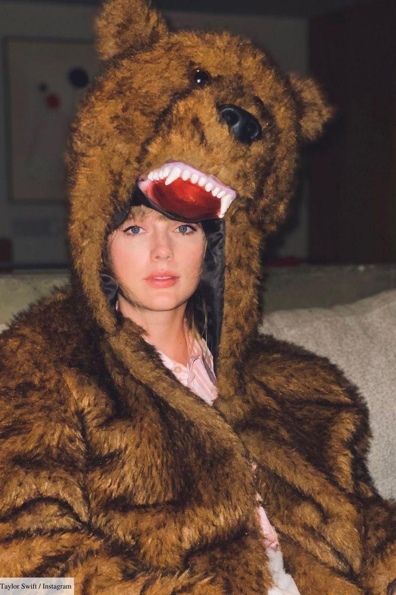 taylor swift bear costume