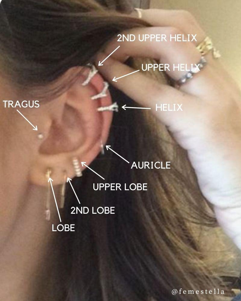 ear piercings diagram