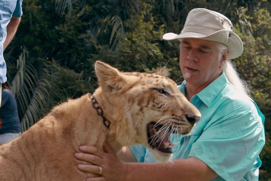 tiger king netflix what happened to animals