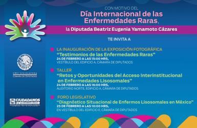 Cartel informativo sobre foro legislativo DiMER 2015