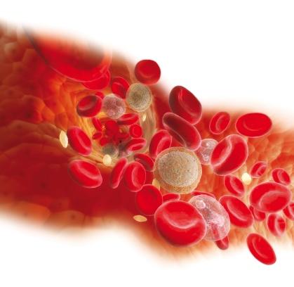 coagulacion sangre