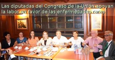 Diputadas del Congreso de la Unión hacen frente común en favor de las enfermedades raras