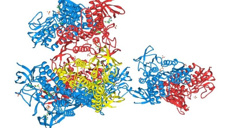 Deficiencia de piruvato deshidrogenasa E1-alfa