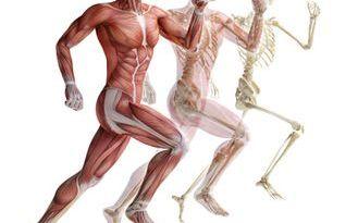 Osteopatía estriada - hiperpigmentación - mechón blanco