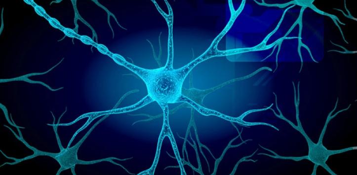 Esclerosis lateral primaria juvenil