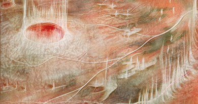 Retinocoroidopatía vítrea autosómica dominante