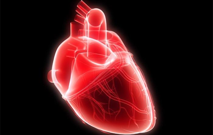 Polisindactilia - malformación cardíaca