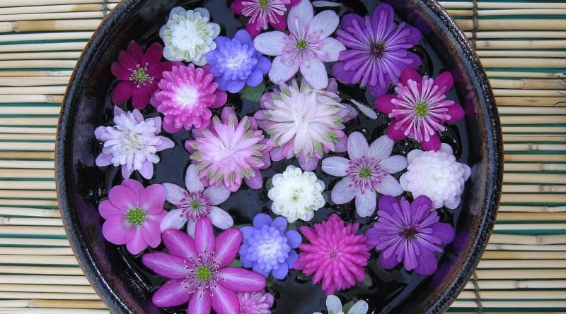 flor yukiwariso, ICORD, Declaración 2012 Yukiwariso