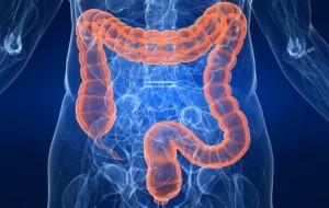 Síndrome secundario del intestino corto