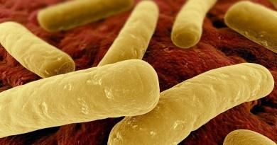 Botulismo infeccioso por toxinas