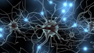 Síndrome de ataxia cerebelosa - hipogonadismo