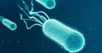 Inmunodeficiencia relacionada con FADD