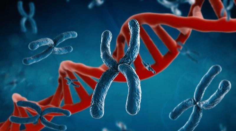 Muerte infantil súbita - disgenesia de los testículos