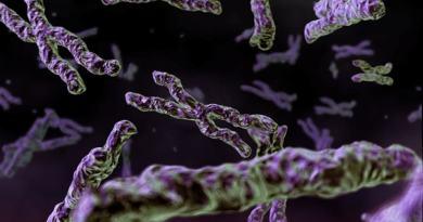 Cromosoma 10 en anillo