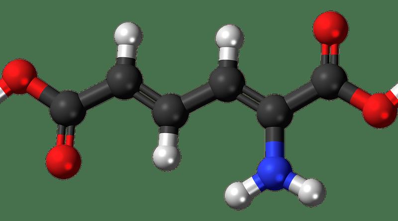 Deficiencia de dimetilglicina deshidrogenasa