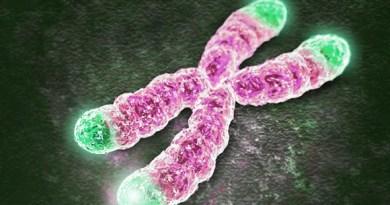 Disomía uniparental materna del cromosoma 20