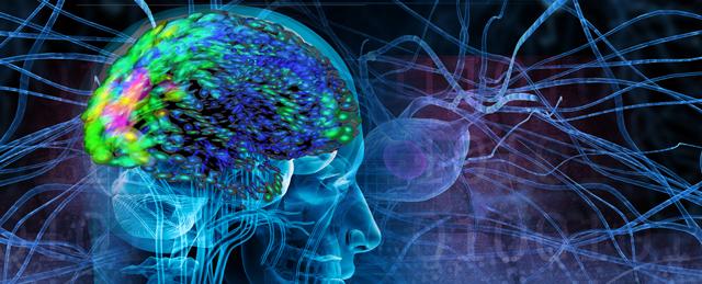 Epilepsia del lóbulo frontal nocturna autosómica dominante
