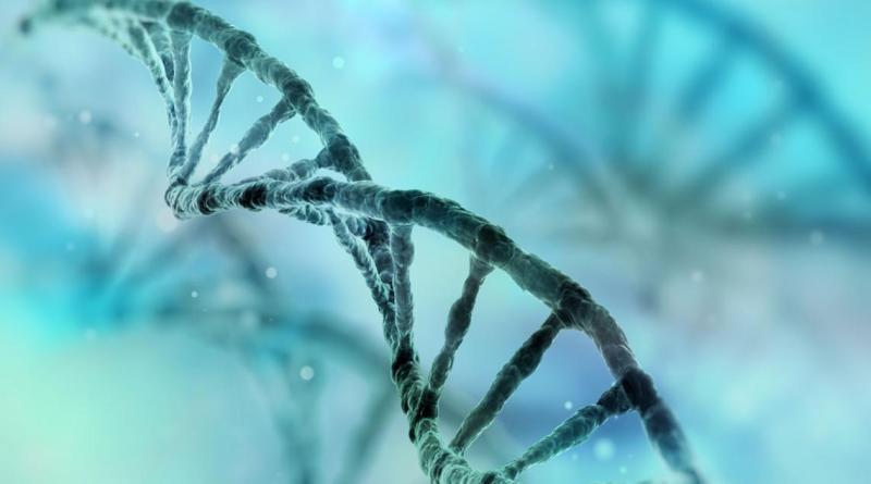 Chiesi-Farmaceutici-y-StartUp-Health-buscan-innovadores-de-enfermedades-raras