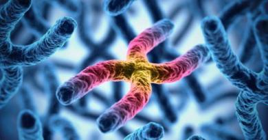 Investigaciones recientes vinculan la hemocromatosis hereditaria a enfermedades articulares y cánceres
