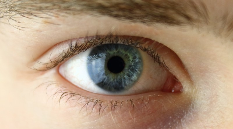 Un estudio indica la necesidad de más genetistas oculares para reducir el diagnóstico erróneo de la enfermedad Stargardt