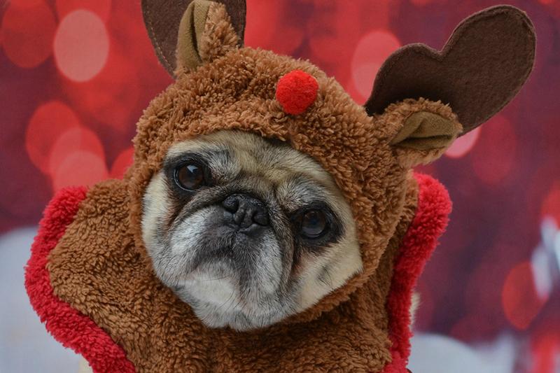 10 Hopeful Hacks for Beating the Holiday Blues