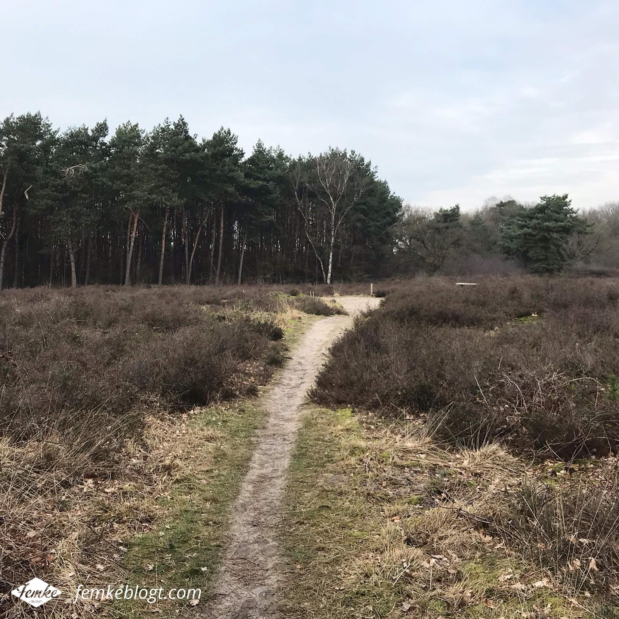 Maandoverzicht februari | Wandelen in Limburg