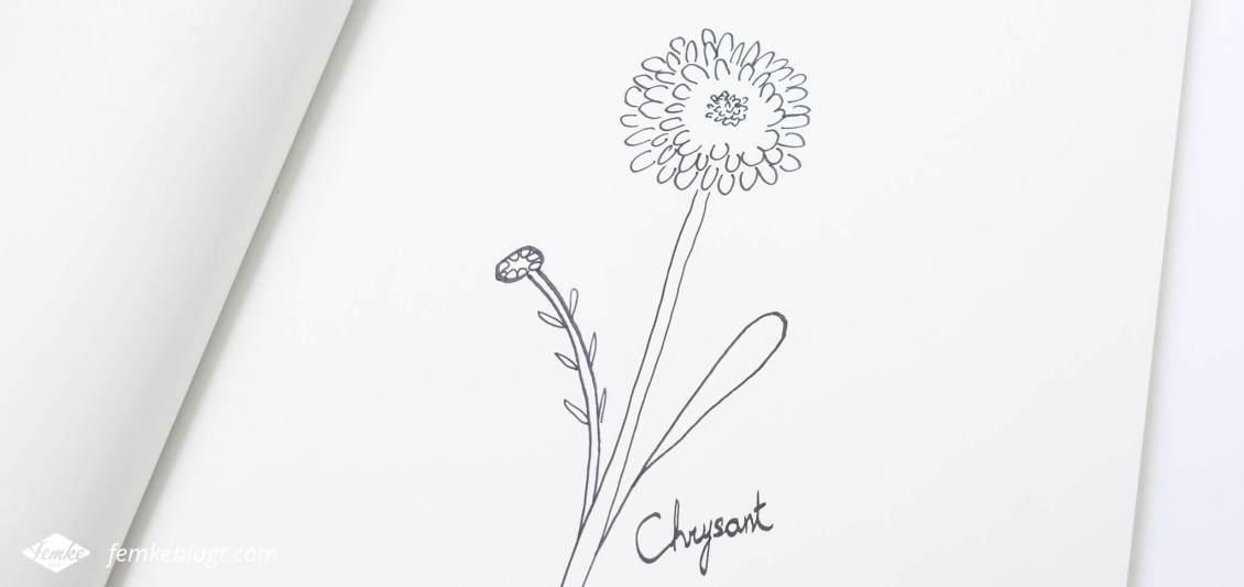 31 Dagen bloemen #3 | In deel 3 van de 31 Dagen bloemen serie gaan we de chrysant tekenen