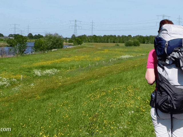 Femke blogt | Maandoverzicht met de hoogtepunten van mei
