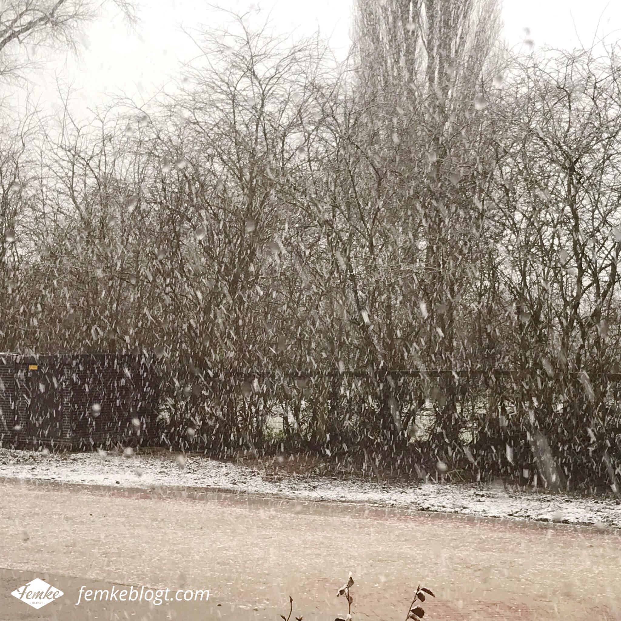 Maandoverzicht december   De eerste sneeuw in december